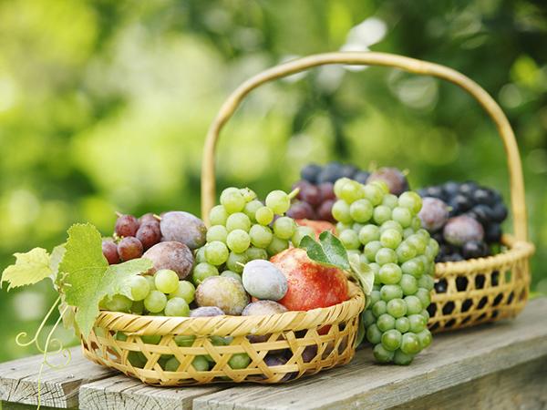 几种常见病症的食疗方法,如:感冒吃什么食物,低血压吃什么? 健康 第2张